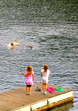 vacations in canada include with dog friendly accommodations in inn hotels in Parry Sound on Otter Lake